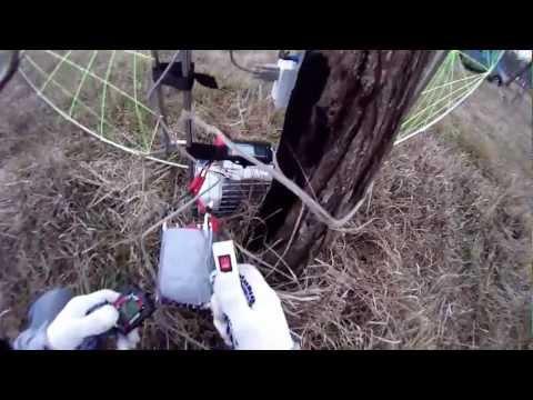 Как сажать малиновое дерево осенью 36