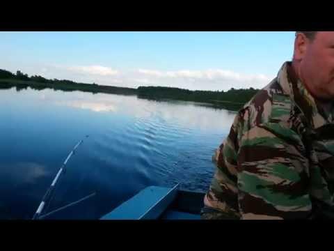 рыбалка в вологодской области лежа
