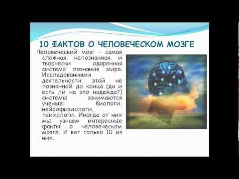 10 фактов о мозге ноутбука хотела закачать