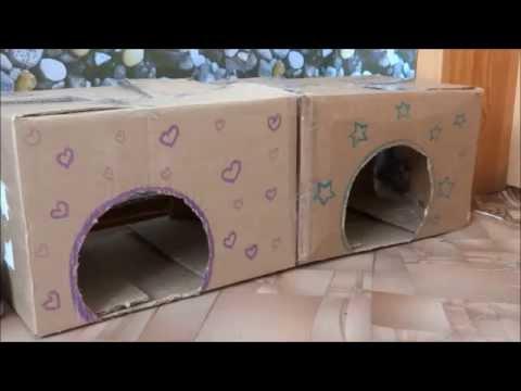 Своими руками домик для кошки из подручных средств