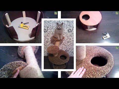 Как сделать домик для котенка своими руками картинки