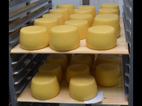 Контейнер для сыра своими руками