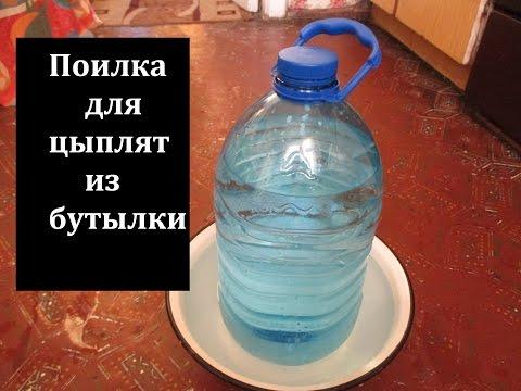 Поилка своими руками из пластиковой бутылки