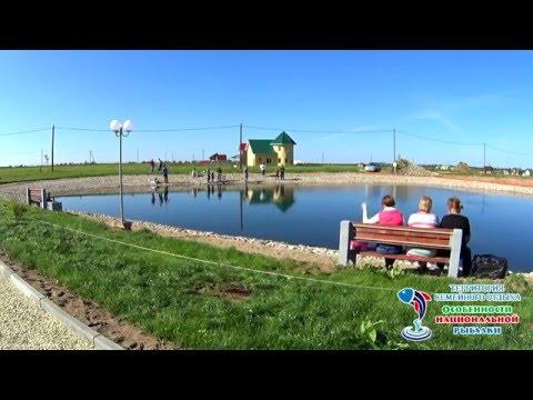 сиверский канал рыбалка