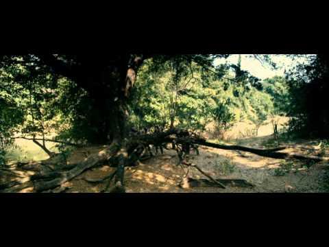 Онлайн видео Ключ Саламандры. 2011.avi. Вы можете посмотреть этот