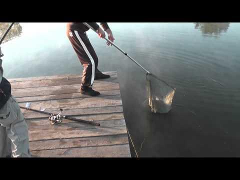 домодедово рыбалка форель
