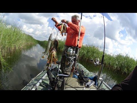 рыбалка 2017 на ингуле