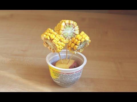 Осенние поделки из кукурузы своими руками