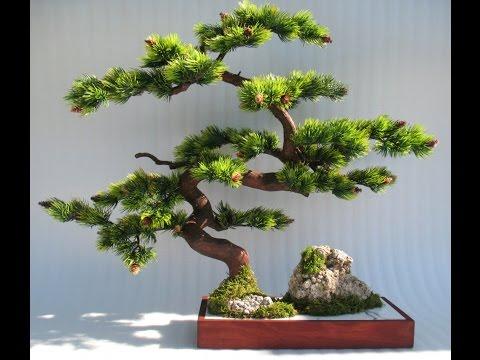 Как сделать китайское дерево своими руками