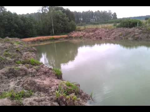 Озеро на даче своими руками для разведения рыбы