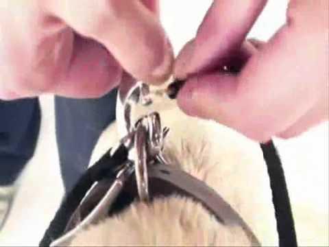 Поводок-рулетка для собак своими руками