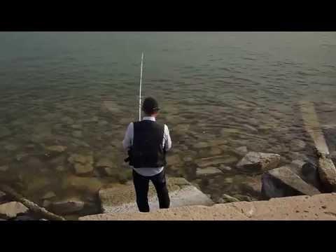 как ловить рыбу с берега на каспийском море